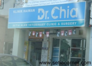 Dr Chia Veterinary clinic and surgery