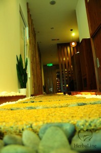 Herbaline Setia Alam – Setia Alam business, setia city mall, news ...