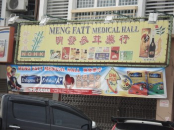 Meng Fatt Medical Hall